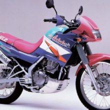 Kawasaki KLE 250 Anhelo — Это туристический эндуро